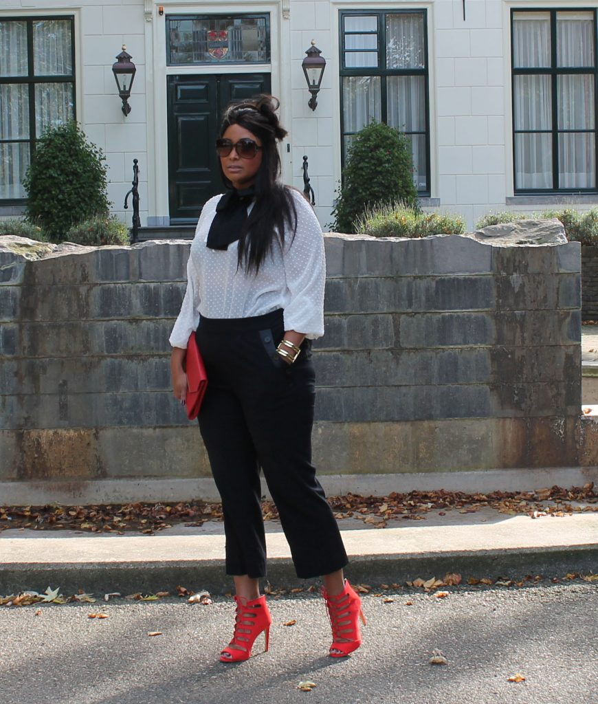 Curvy fashion blogger MS MODE